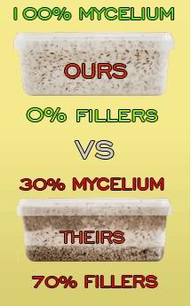100% MYCELIUM GROWKITS