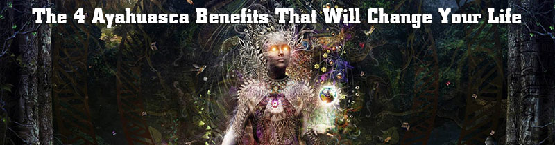 The 4 Ayahuasca Benefits That Will Change Your Life