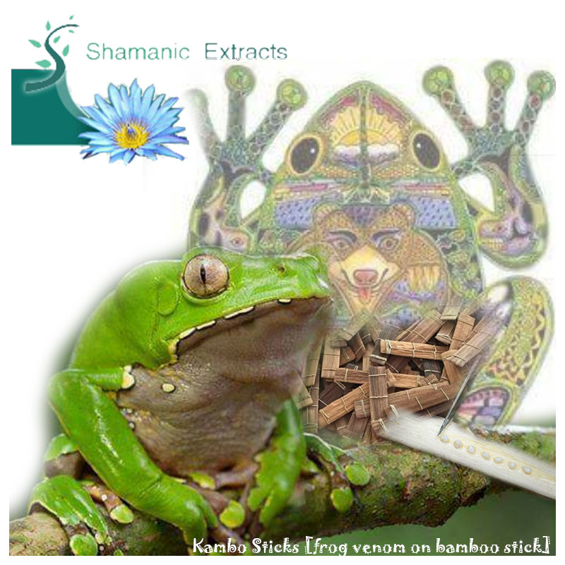 Kambo Sticks - frog venom on bamboo
