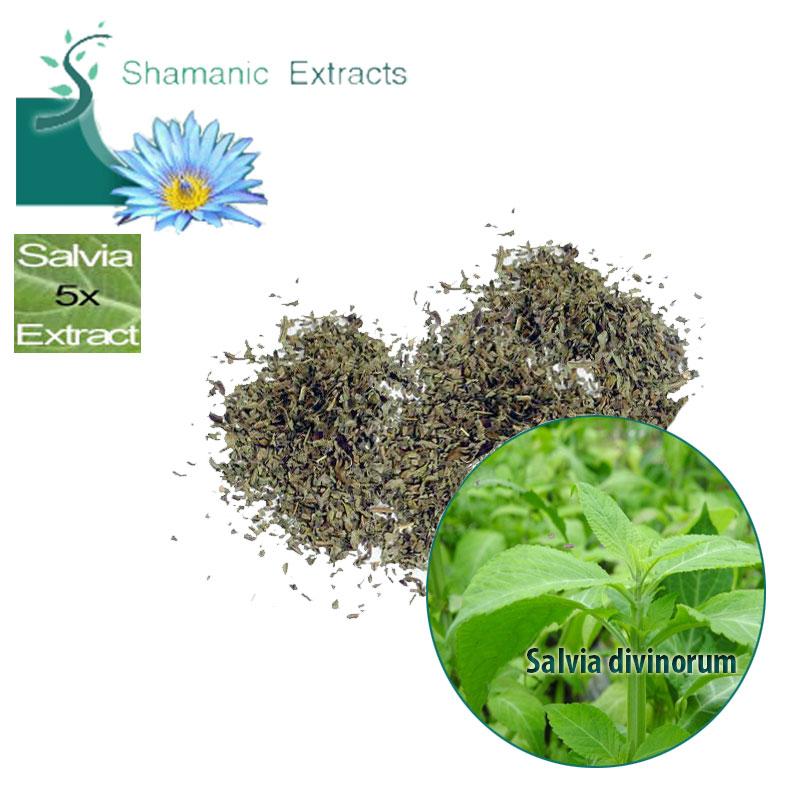 Salvia 5x extract