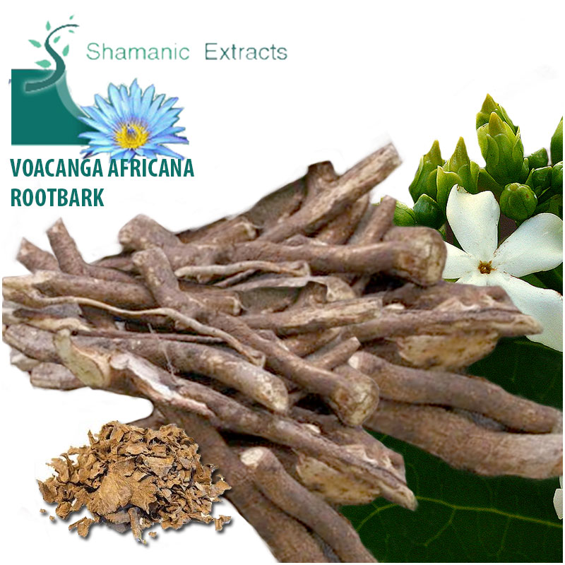 voacanga africana root bark
