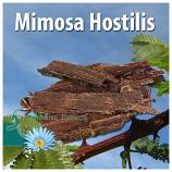 Mimosa Hostilis inner bark