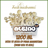 Albino A growkit 1200ml