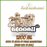 McKennaii 1200ml kweekset Freshmushrooms